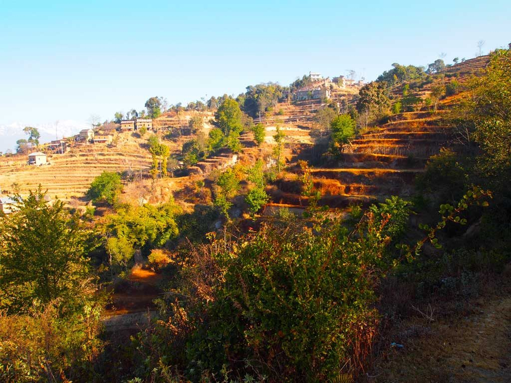 Nagarkot – Changunarayan  Day Hiking Tour