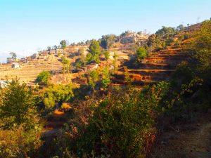 Nagarkot – Changunarayan  Day Hiking Tour