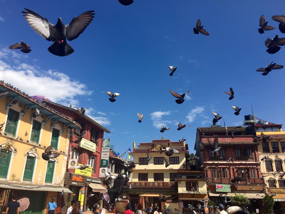 Nepal Nature and Culture Luxury Tour